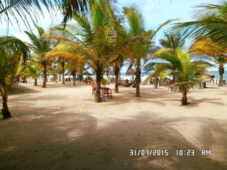 Jungle beach Resort - Sanyang vacation rentals