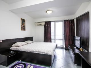 Business class 1-room apartment in the center - Chisinau vacation rentals