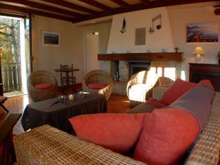 Saint-Jorioz - Le NOIRET Chalet familial - Saint-Jorioz vacation rentals