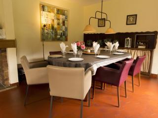 DUINGT - Chateau - Family HOUSE - Duingt vacation rentals
