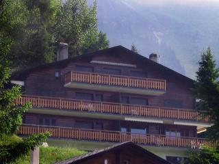 Appartement 4 pièces,2ème étage, Savoleyres - Verbier vacation rentals