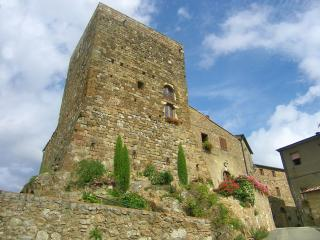 Suggestivo alloggio in torre medievale - Montecatini Val di Cecina vacation rentals