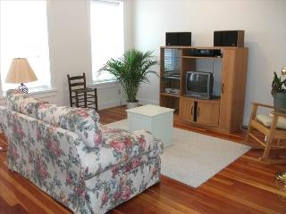 Nice Condo with Internet Access and A/C - Clarksville vacation rentals
