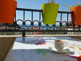 APARTMENT PENT HOUSE - VILLA SANDRA - Petrovac vacation rentals