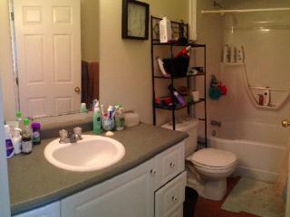 Beautiful 2 bedroom Condo in Halifax with Internet Access - Halifax vacation rentals