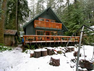 #09 Snowline Country Cabin near Mt. Baker! - Glacier vacation rentals