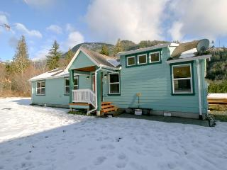#14 -Maple Falls Cabin near Mt. Baker! - Maple Falls vacation rentals