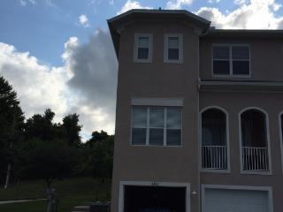 Spacious Townhouse on Lake Tarpon - Tarpon Springs vacation rentals