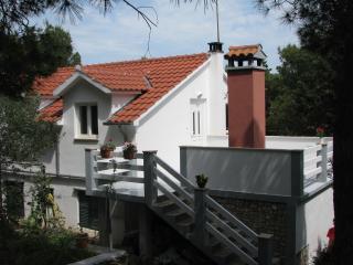 8095  A1(4+1) - Cove Osibova (Milna) - Cove Osibova (Milna) vacation rentals