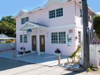 Perfect Townhouse with Internet Access and A/C - Dunmore Town vacation rentals