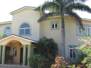 The Palms Villa (SnoozeInn Jamaica) - Black River vacation rentals