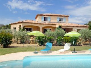 Villa Provence pisc chauffée prox Aix, Marseille - Pelissanne vacation rentals