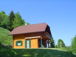 Nice House with Internet Access and Wireless Internet - Treffen vacation rentals