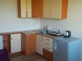 Nice Studio with Central Heating and Microwave - Druskininkai vacation rentals