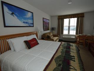 Gorgeous Condo with 3 BR/2 BA in Snowshoe (Summit - 302 D) - Snowshoe vacation rentals