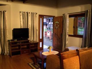 Beautiful 3 bedroom Gramado House with A/C - Gramado vacation rentals