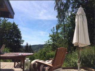 Ferienhaus mit Traumaussicht - Biedenkopf vacation rentals