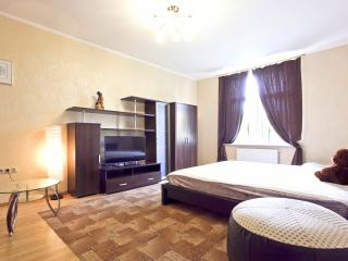 VSPB Apartment in the center for a large company - Saint Petersburg vacation rentals