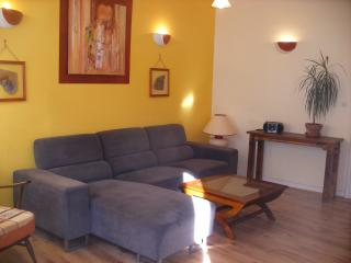 spacious accommodation in  Saumur town centre - Saumur vacation rentals