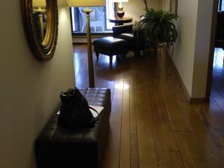 Executive quality condo - Bloomington vacation rentals