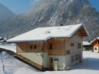 Apartment in ski resort next to nature reserve - Sixt-Fer-a-Cheval vacation rentals
