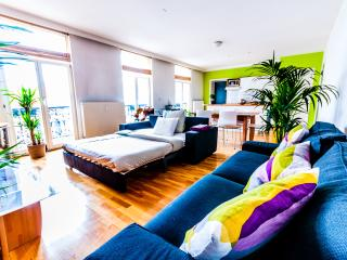Bright & Large Central Apt in Brussels - Brussels vacation rentals