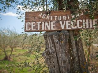 Cetine Vecchie - Mimosa - Torrita di Siena vacation rentals