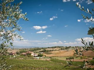 Cetine Vecchie - Lily - Torrita di Siena vacation rentals