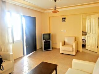 1 bedroom Condo with A/C in Didim - Didim vacation rentals
