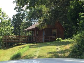 Starlight Cabin near Buffalo River - Harriet vacation rentals