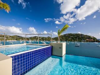 Gorgeous 4 bedroom Great Cruz Bay Villa with Internet Access - Great Cruz Bay vacation rentals