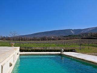Perfect Villa with Internet Access and Dishwasher - Saint-Martin-de-Castillon vacation rentals