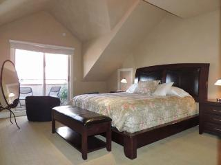 Ski-in, Ski-Out; 3BR +Loft 3.5BA - Mountain Village vacation rentals