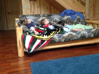Lake Retreat - Longville vacation rentals