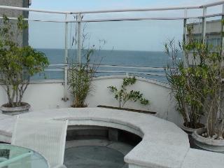 Olympics : Apartment in Apart-Hotel 2 - Rio de Janeiro vacation rentals