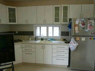 2 bedroom apartment near Tel Aviv - Rishon Lezion vacation rentals