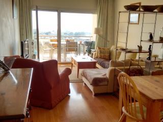 A beautiful duplex apartment with fantastic views - Palau-Saverdera vacation rentals