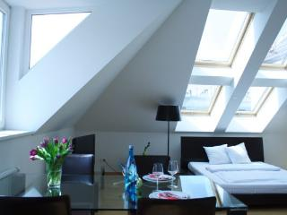 Penthouse in the center of Vienna! - Vienna vacation rentals