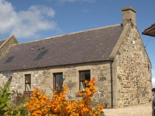 Rural Location, Sleeps Upto 6, Pet Friendly - Cullen vacation rentals