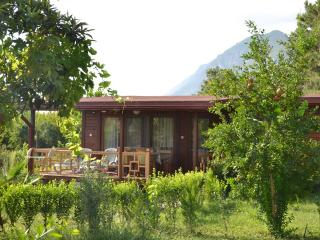 Holiday house Dila Su, comfortable and quiet - Cirali vacation rentals