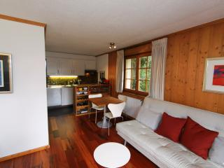 Charming Verbier Studio rental with Satellite Or Cable TV - Verbier vacation rentals