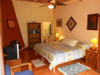 One Story Home three blocks from Ajijic Plaza. - Ajijic vacation rentals