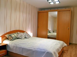 Spacious apartment in Šiauliai - Siauliai vacation rentals