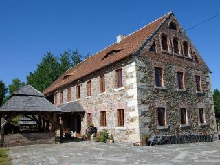 One bedroom apartment in quiet rural location - Gorlitz vacation rentals