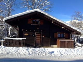 Convenient Chalet with Microwave and Fireplace - Montriond vacation rentals