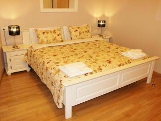 Nice Condo with Internet Access and A/C - Timisoara vacation rentals
