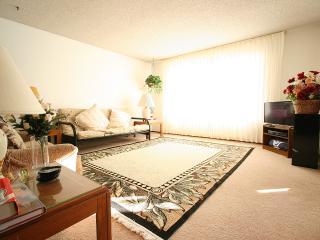 NON-SMOKING   Sunny (~ 700 sq ft) 1-BR Apartment - San Francisco vacation rentals