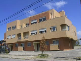 Appartement Rio Meao a 20 km de Porto - Espinho vacation rentals