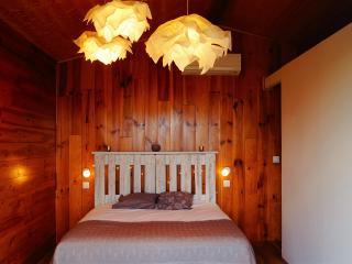 Chalet/Chambre d'hôte à 7 min de Saint Florent - Saint Florent vacation rentals
