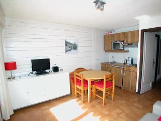 Portes du Soleil apartment studio le Triolet #18 - La Chapelle-D'Abondance vacation rentals